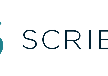 If You Like Reading You Should Be On Scribd