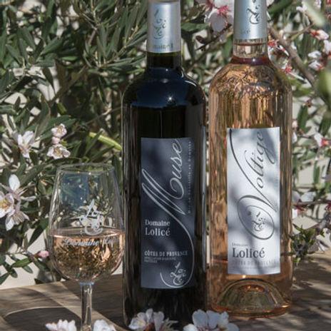 Vins Cuvées Voltige et Muse