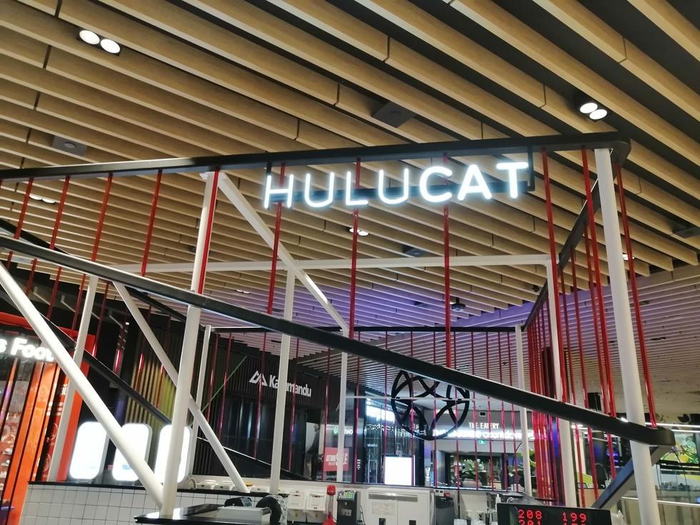 HuluCat (7).jpg