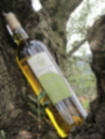 Domaine_Lolice_Huile_d'olive2_edited.jpg
