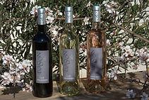 Wine Cuvées Evasion