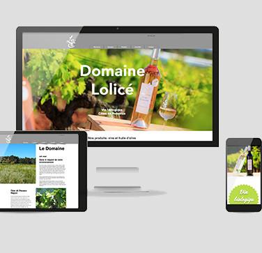 Bioweingut Lolicé, Webseite