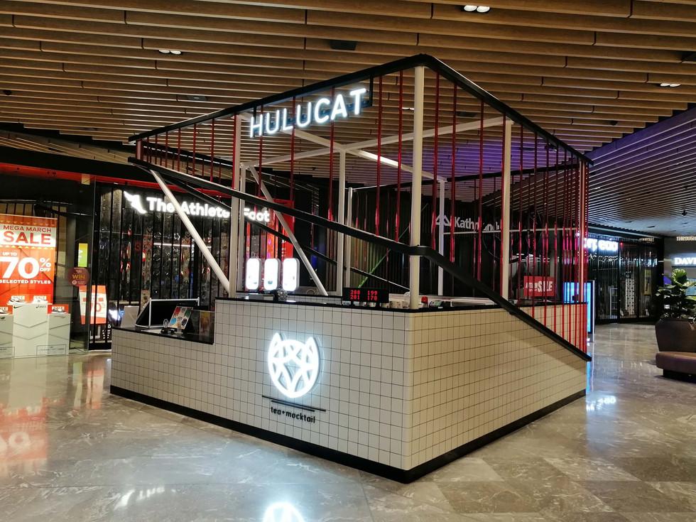 HuluCat (5).jpg