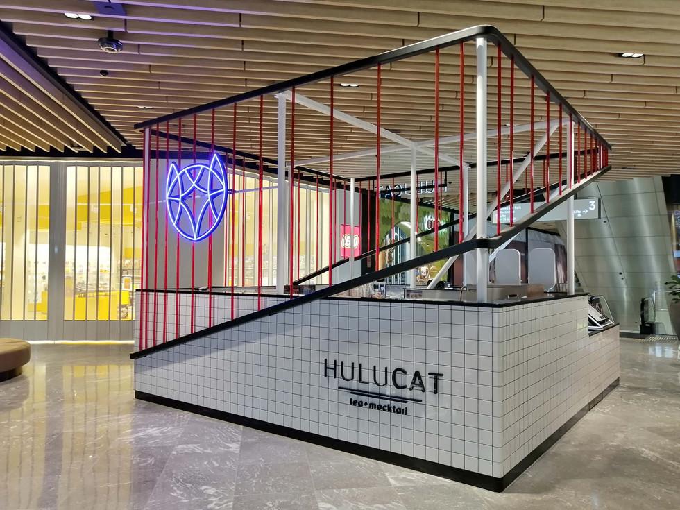 HuluCat (6).jpg