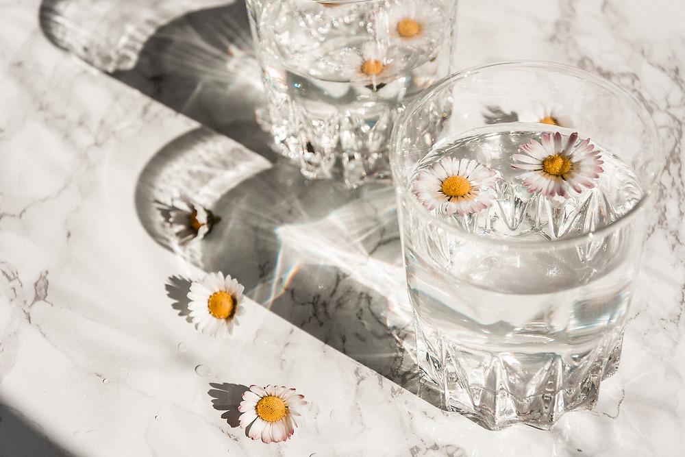 Unsere Seele sucht Schutz. Wie diese schönen Gänseblümchen in dem Glas. Sie braucht Transparenz und Liebe.