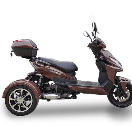 PST50-1Z brown.jpg