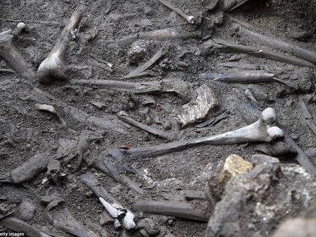 """Archaeology"""