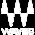Mic Delgado Waves Music Production Music Engineer Audio Engineer