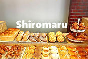 shiromarulogo.jpg