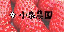 小泉農園ロゴ.jpg