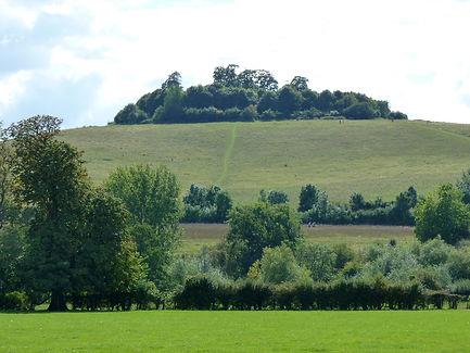 Wittenham-Clumps1.jpg