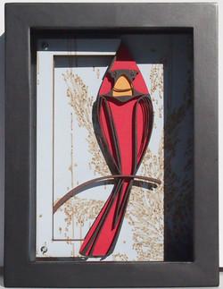 Cardinal  $65
