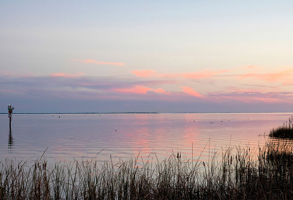Marsh Meets the Bay