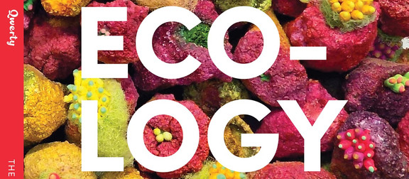 ECOLOGY ISSUE: why ecology, why now?