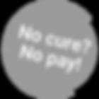No cure no pay logo transparant.png