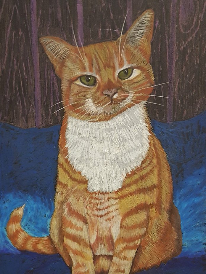Pancak, a cat of the world, A3 soft past