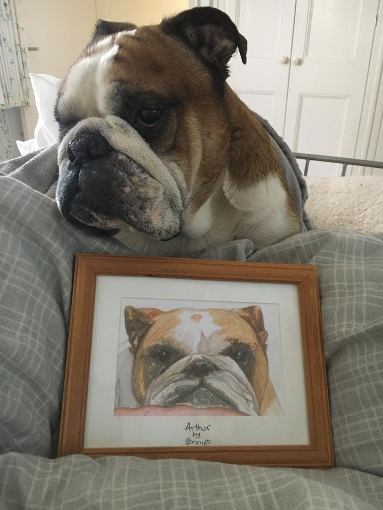 Arthur English Bull Dog and his portrait