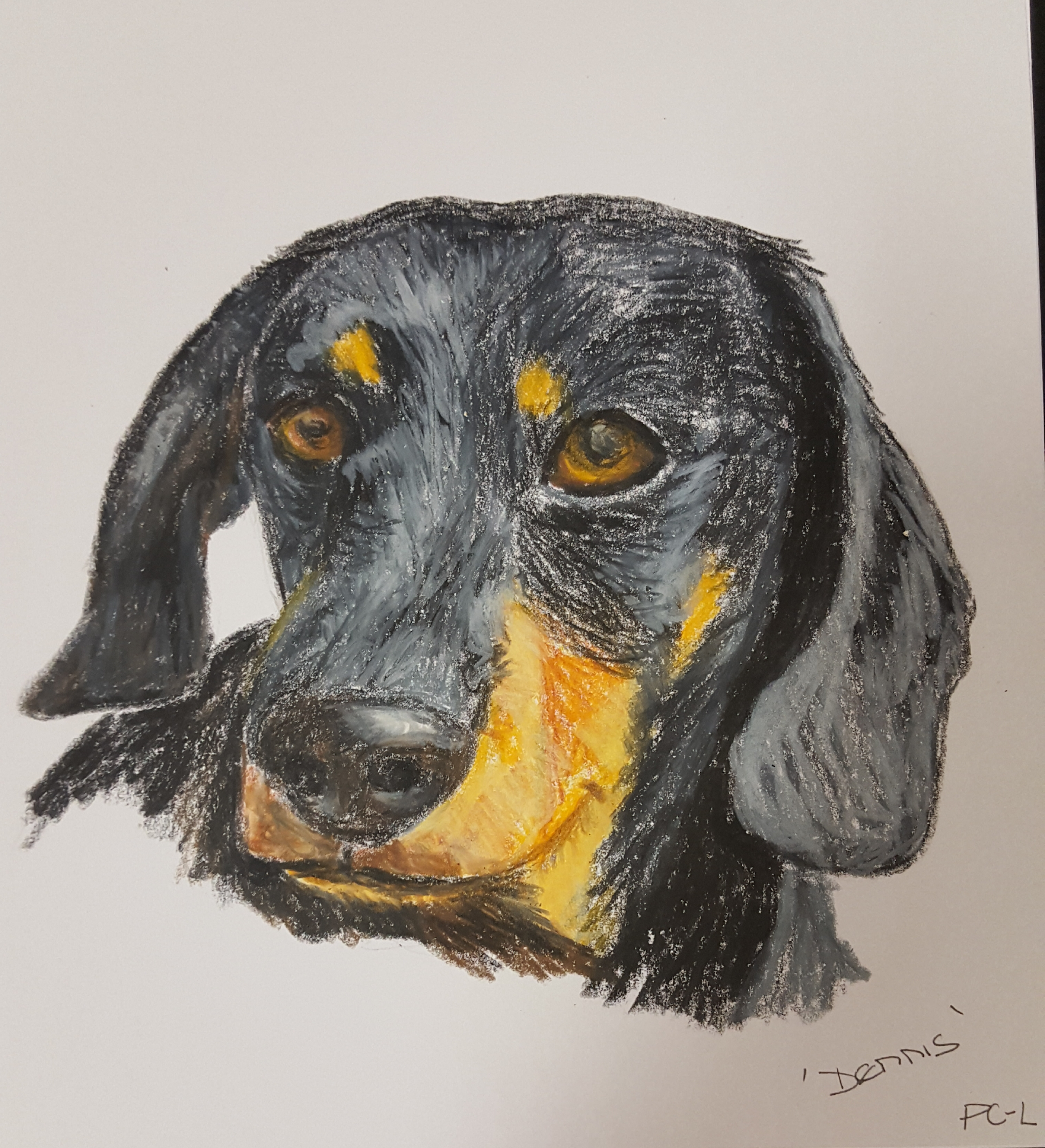 Denis Dachshund cd card hand drawn