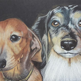 Hector and Pongo Dachshunds  David and R