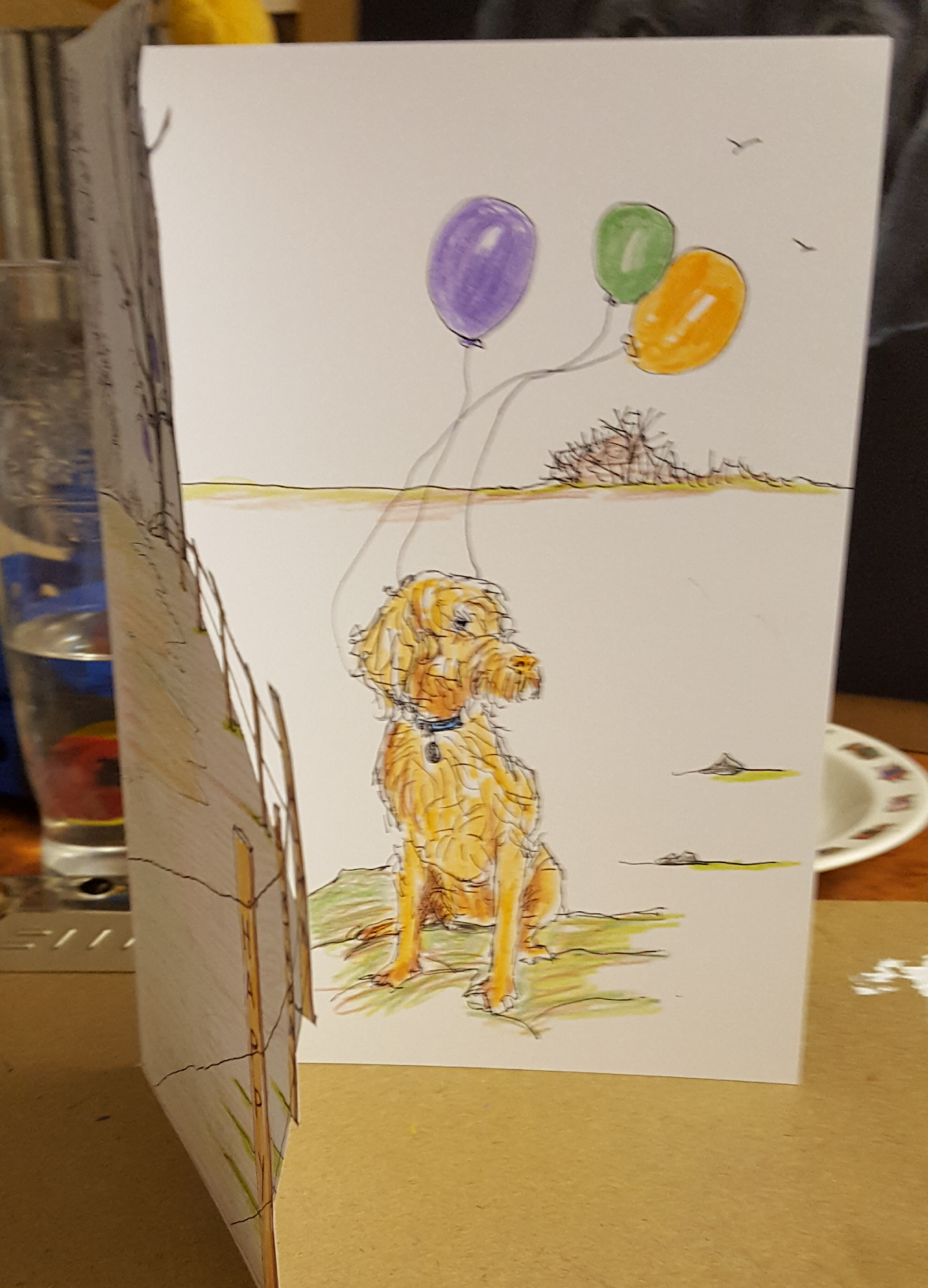 Eva, Hungarian Wire-haired Viszla Birthday card