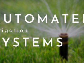 Pros and Cons of Automated Irrigation Systems: Is it Right For You?