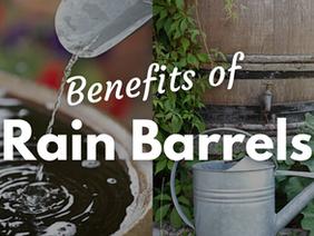 The Benefits of Rain Barrels