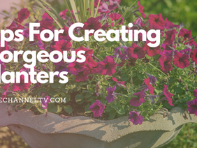 Tips on Creating Gorgeous Planters this Season That You'll Love