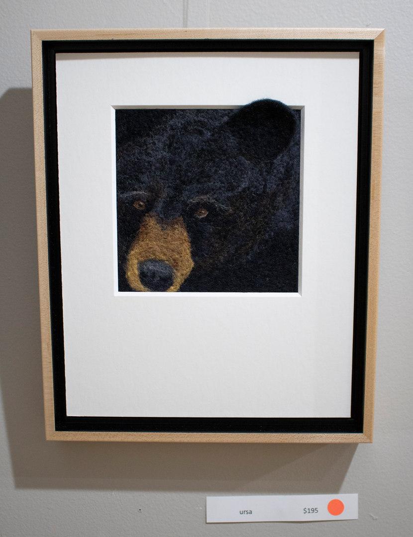 Ursa by Heidi Bond