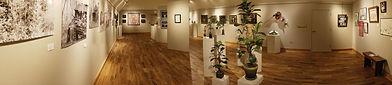 2021 'New Voice': Emerging Artists Exhibit