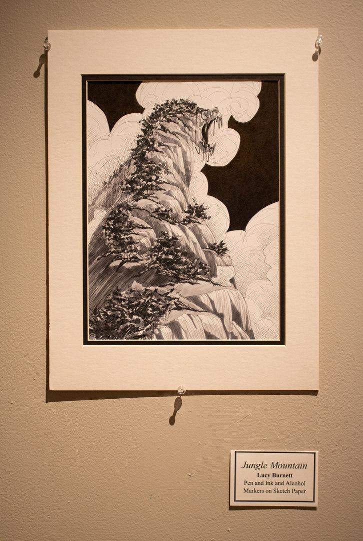 Jungle Mountain by Lucy Burnett