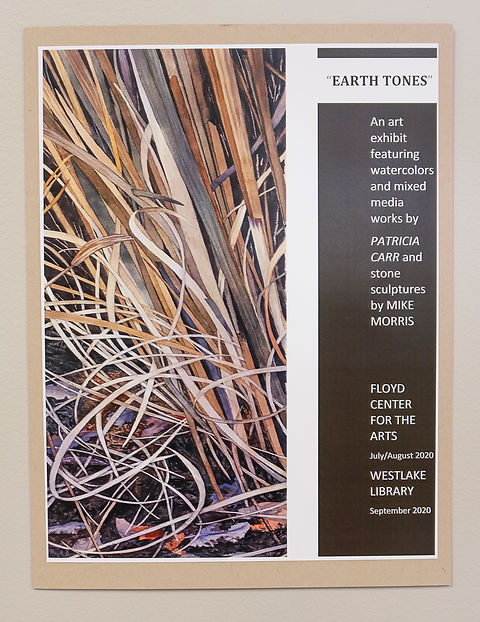 Falcon Gallery 2020 - Earth Tones (53 of