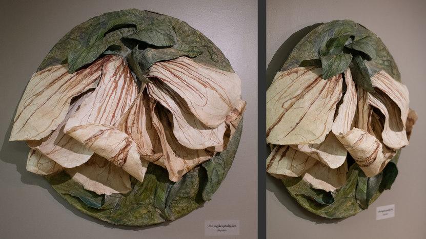 Fiber Magnolia (spirituality): Floribunda by Gibby Waitzkin