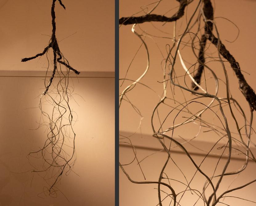 Tree Hair by Nicole Uzzell