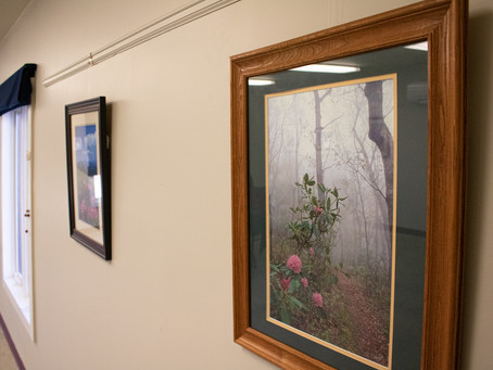 In the Falcon Gallery: An Exhibit of Photography by Bill Booz