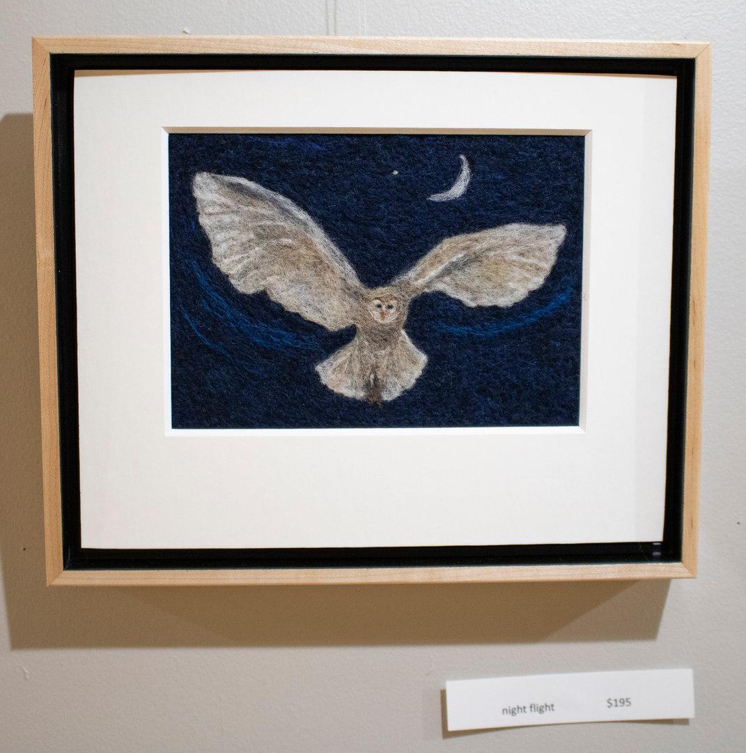 Night Flight by Heidi Bond