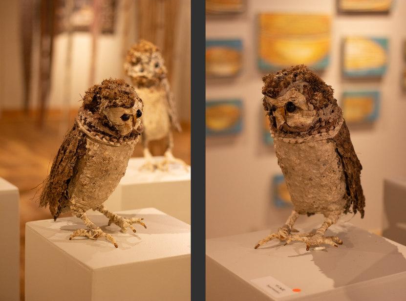 Owl #2 by Bryant Holsenbeck