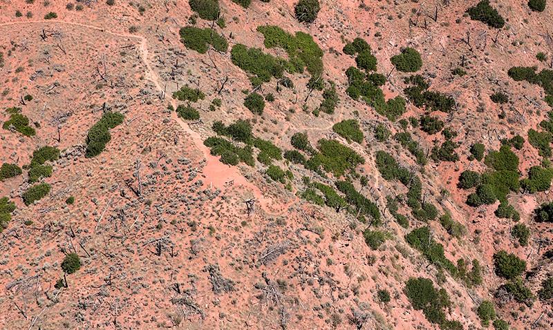 south-canyon-trail-web2.jpg