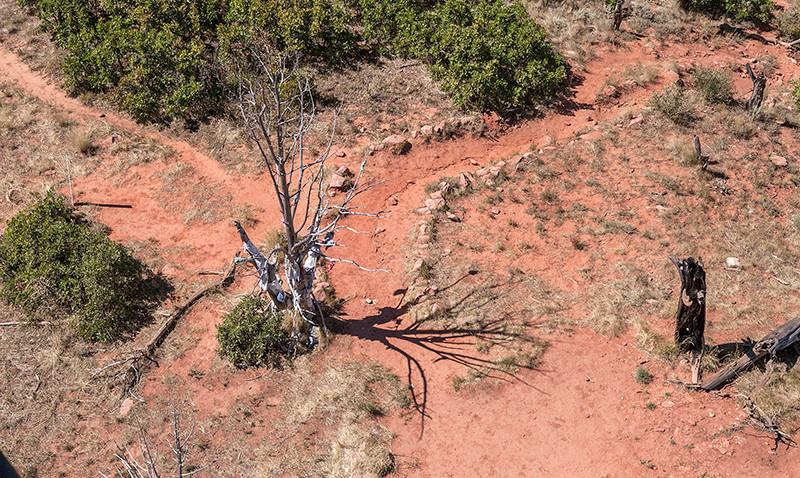 south-canyon-trail-web1.jpg