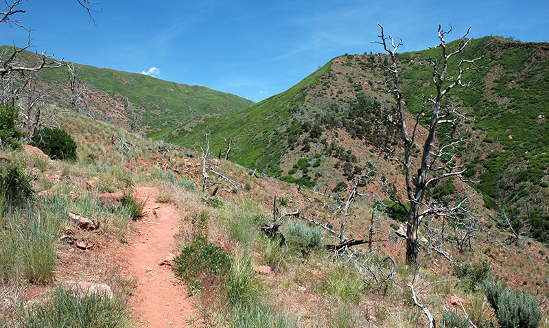south-canyon-trail-web.jpg