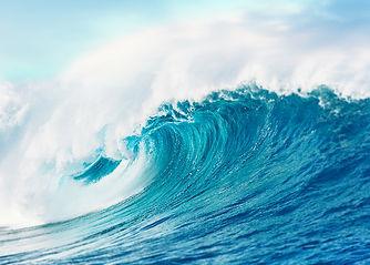 Wave new -2.jpg