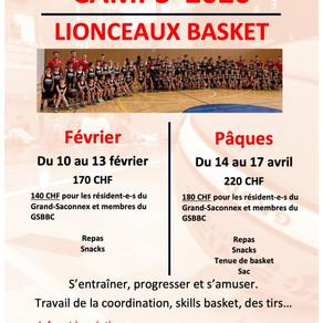 Camps Lionceaux