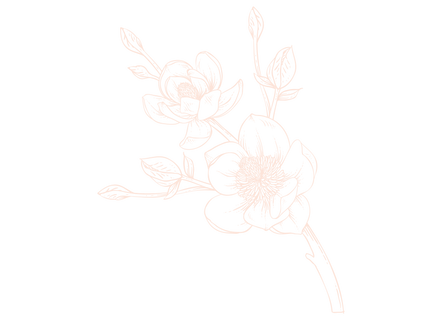 magnolie-offwhite-komplett.png