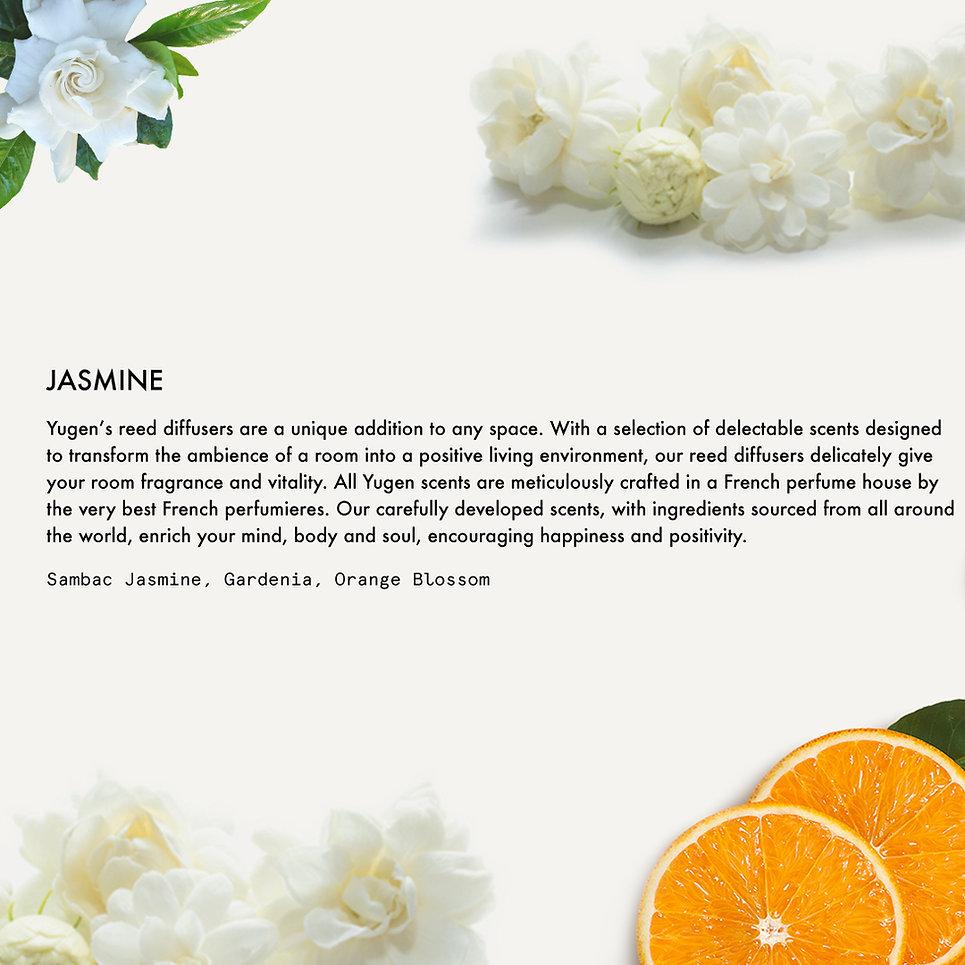 13.Jasmine.jpg