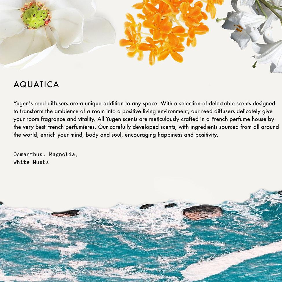 15.Aquatica.jpg