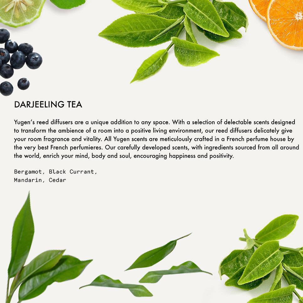 12.DarjeelingTea.jpg