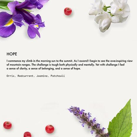 4.Hope.jpg