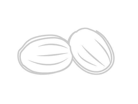 Tonka Bean-01.png