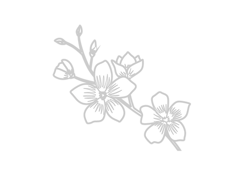 Cherryblossom-01.png