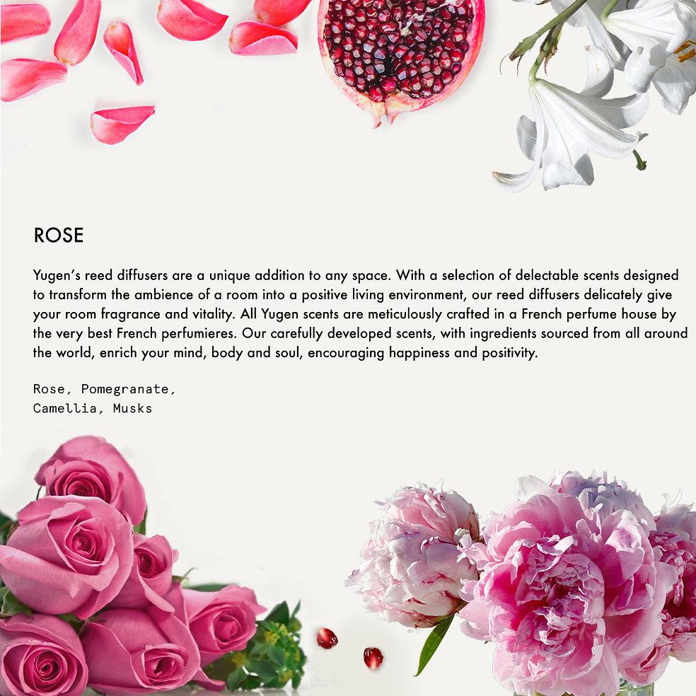 14.Rose.jpg