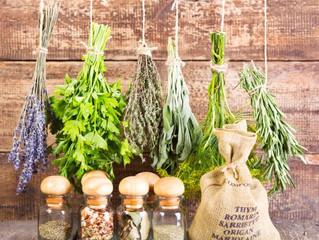 Zber a sušenie byliniek